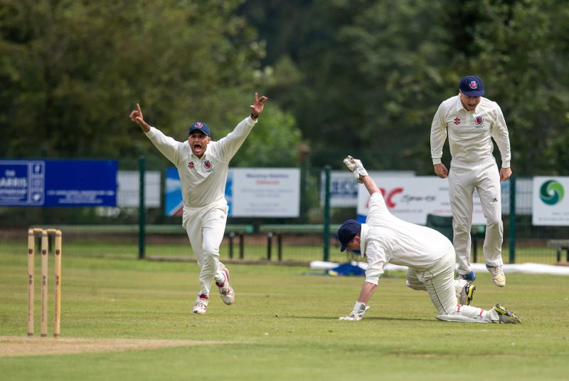 aire-wharfe cricket-out