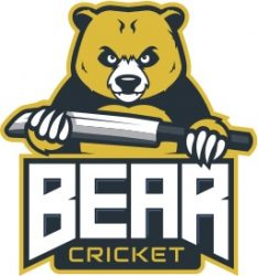 Bear Cricket