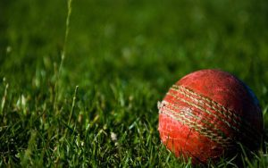 cricket ball - club cricket